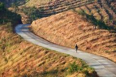 Het lopen over krommeweg in berg Royalty-vrije Stock Foto