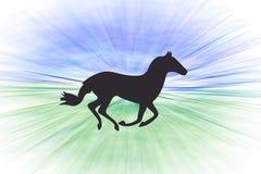Het lopen paard, snelheid Royalty-vrije Stock Foto's