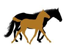 Het lopen paarden - silhouetten Royalty-vrije Stock Fotografie