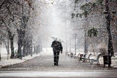 Het lopen in het park tijdens sneeuw stock afbeeldingen