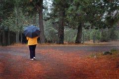 Het lopen in regenachtig land stock foto's