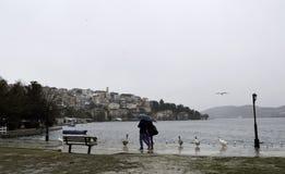 Het lopen in regenachtige dag Stock Foto