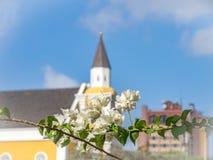 Het lopen rond Petermaai - kerk en bloemen Stock Afbeeldingen