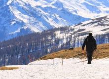 Het lopen in Ski Area Royalty-vrije Stock Afbeelding