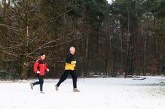 Het lopen in Sneeuw 12 Stock Fotografie