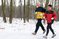 Het lopen in Sneeuw 7 Stock Foto's