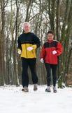 Het lopen in Sneeuw 9 Royalty-vrije Stock Fotografie