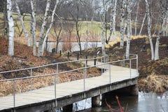 Het lopen van brug in de Herfst Royalty-vrije Stock Afbeeldingen