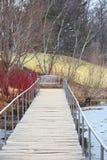 Het lopen van brug in de Herfst Stock Foto's