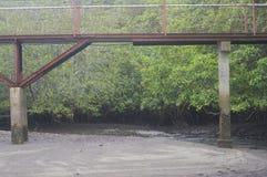 Het lopen van brug over rivier stock afbeeldingen