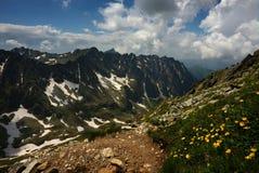 Het lopen van de berg weg met gele bloemen Royalty-vrije Stock Afbeelding