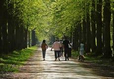 Het lopen van de familie hout Stock Fotografie