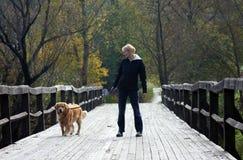 Het lopen van de hond Royalty-vrije Stock Fotografie