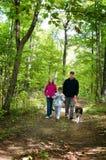 Het lopen van de hond door een bos Stock Foto's