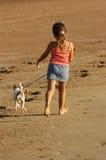 Het lopen van de hond langs strand royalty-vrije stock foto