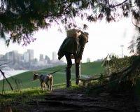 Het lopen van de hond in de stad stock fotografie