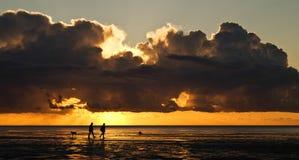 Het lopen van de hond tijdens zonsondergang op het strand Stock Foto's