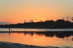 Het lopen van de honden bij zonsopgang Royalty-vrije Stock Foto's