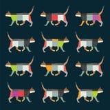Het lopen van de kleur kattenachtergrond Royalty-vrije Stock Foto's