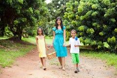 Het lopen van de moeder en van jonge geitjes Royalty-vrije Stock Foto's