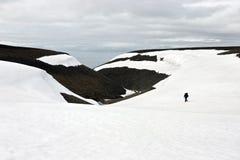 Het Lopen van de persoon Toendra in Svalbard stock afbeelding
