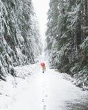Het lopen van de sneeuw behandelde sleep met een rode paraplu stock afbeelding