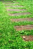 Het lopen van de steen weg stock foto's