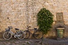 Het lopen van de straten van Pisa Stock Foto's