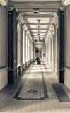Het lopen van de toerist Royalty-vrije Stock Afbeeldingen