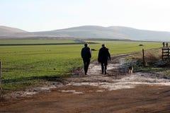 Het lopen van de vader, van de zoon en van de hond Royalty-vrije Stock Foto's