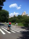 Het lopen van de de vakantietijd van Central Parknew york de aard van de de reisarchitectuur en de bouw stock foto's