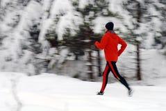 Het lopen van de winter Stock Afbeeldingen