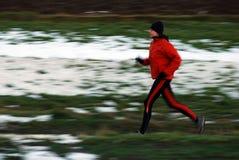 Het lopen van de winter Stock Foto