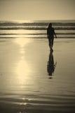 Het lopen van de zonsondergang Royalty-vrije Stock Afbeeldingen