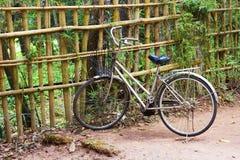 Het lopen van fiets met een mand dichtbij een bamboeomheining Stock Afbeeldingen