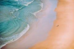 Het lopen van het strand Stock Afbeeldingen