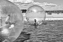 Het lopen van het water bal Stock Fotografie