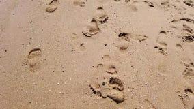 Het lopen van naakte voet op zandig strand stock footage