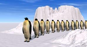 Het lopen van pinguïnen Royalty-vrije Stock Afbeeldingen