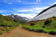 Het lopen van sleep in de berg Van Alaska Stock Foto
