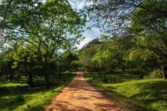 Het lopen van slepen in Mihintale, Sri Lanka royalty-vrije stock fotografie