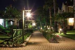 Het lopen van steeg bij nacht Stock Foto