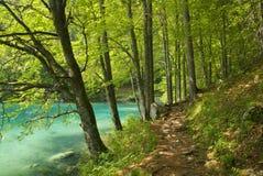 Het lopen van weg door het meer stock fotografie