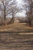 Het lopen van weg door moerasland in het park van New England Royalty-vrije Stock Afbeelding