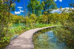 Het lopen van weg door het mooie meer Stock Foto