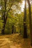 Het lopen van weg in een tuin in Saksen royalty-vrije stock fotografie