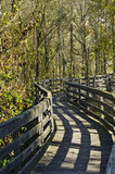 Het lopen van weg in het bos Stock Afbeeldingen