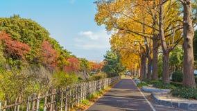 Het lopen van Weg langs het zijkasteel van Nagoya Stock Foto's