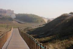 Het lopen van weg langs strand Stock Afbeelding