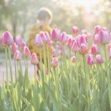 Het lopen van weinig kind in park met bloeiende roze tulpen op voorgrond Zonnige dag Vaag abstract beeld voor de lente Stock Foto's